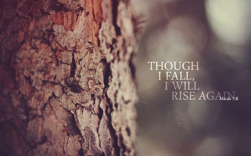 rise-again